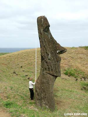 Jo Anne Van Tilburg measuring height of upright moai on exterior slope of Rano Raraku. ©EISP/JVT/Photo: Alice Hom.
