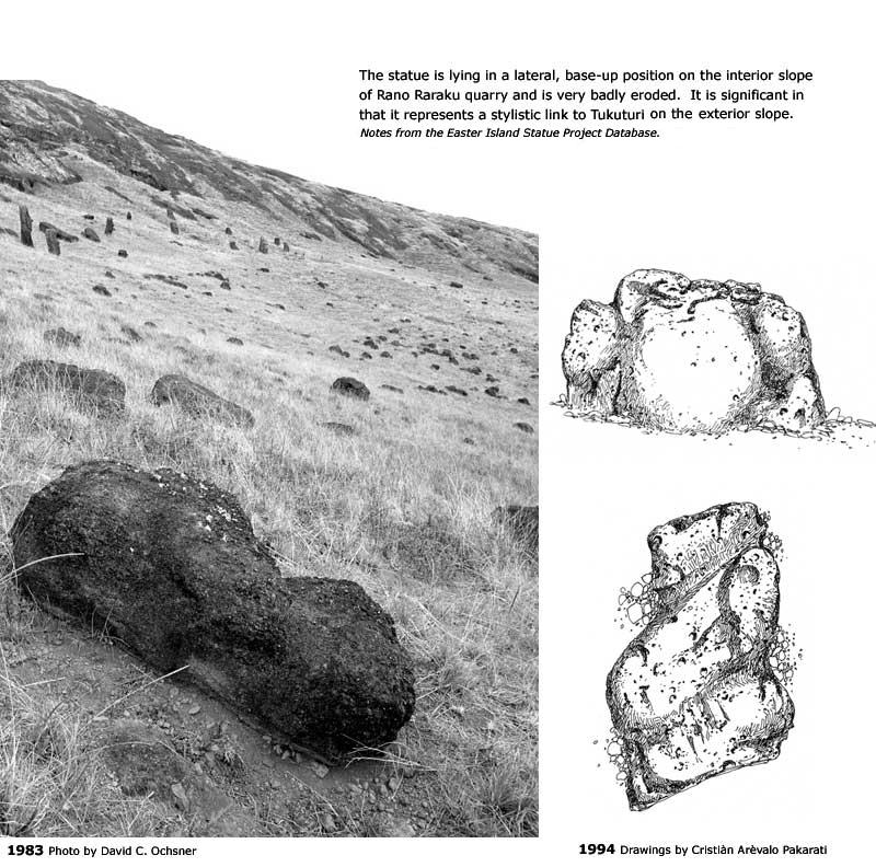 "EISP Archival notes about ""Pequeno Tukuturi"", a small <em>moai</em> on the slopes of Rano Raraku Interior Quarry"