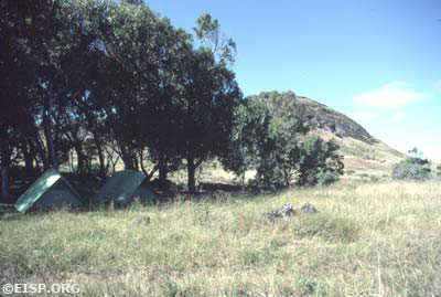 EISP camp, Rano Raraku. ©1984 EISP/JVT/ Photo: D. C. Ochsner.