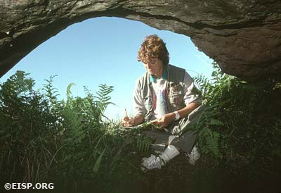 JVT sketching a cave containing a moai torso, Poike, Rapa Nui (Easter Island). Photo by David C. Ochsner, © JVT/EISP.