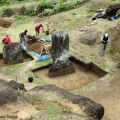 Overview of excavation during Season I. © Easter Island Statue Project