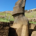 Left side of statue RR-001-157 showing carved arm. © Easter Island Statue Project