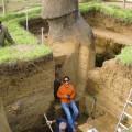 Excavating Unit 156.