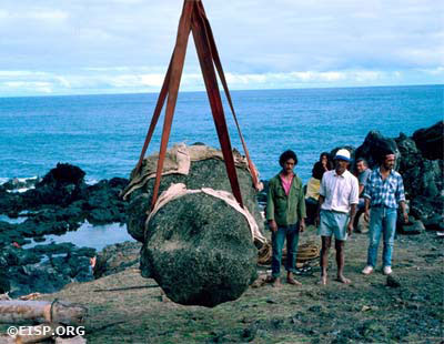 Moai 07-585-001 lifted by a Rapa Nui crew directed by Luis Haoa from the rocks at the base of a seaside cliff. ©1986 EISP/JVT/ Photo: J. Van Tilburg.