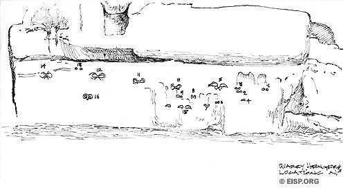 Makemake petroglyphs in Baquedano chamber of Rano Raraku quarry. Drawings by Cristiàn Arèvalo Pakarati © JVT/EISP.