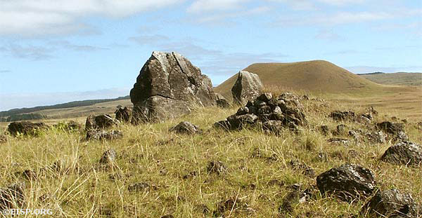 Ahu O'Pepe (20-001), an inland ahu, once held seven moai and as such may be compared to Ahu Akivi (16-001). © 2003 EISP/JVT/Photo: A. Perlin.