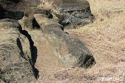 Quarry with a detached moai in Rano Raraku Interior.