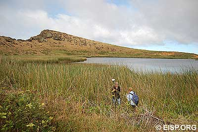 Jo Anne Van Tilburg and Matthew Bates survey the lake edge amongst marshy reeds.
