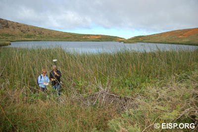 Jo Anne Van Tilburg and Matthew Bates navigate the reeds of Rano Raraku crater to survey in the waterline. Photo: H. Debey