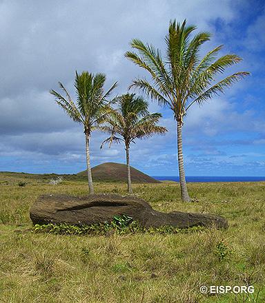 <em>Moai</em> in transport,  Vaitea. Photo: J. Van Tilburg © 2006 JVT/EISP.