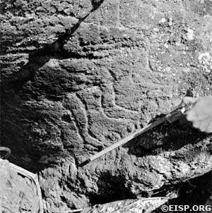 Incised lines on the neck of prone Moai 14-548-009 at Ahu Tongariki © 1984 EISP/JVT/Photos: D. C. Ochsner.