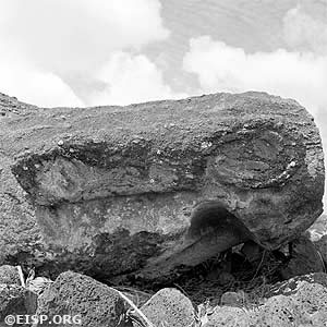 Detail of the broken right ear on Moai 14-548-009 at Ahu Tongariki © 1984 EISP/JVT/Photos: D. C. Ochsner.
