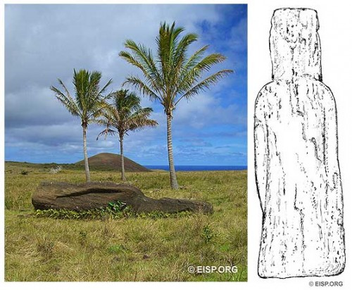 Moai RR-002-066 on the exterior slopes of Rano Raraku, as photographed in 1983 and 2006, also sketched for measurements in 1994 and surveying in 2006. Photo: D. C. Ocshner and J. Van Tilburg © JVT. Drawings: Cristián Arévalo Pakarati © JVT.
