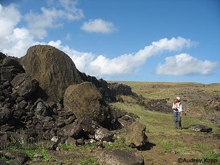 Fallen <em>moai</em> along the northern coast. Photo by Audrey Kopp.