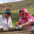 EISP Field Crew screening for artifacts. © EISP 2011