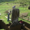 Overview of statue RR-001-157 during the application of the conservation treatment. © Easter Island Statue Project